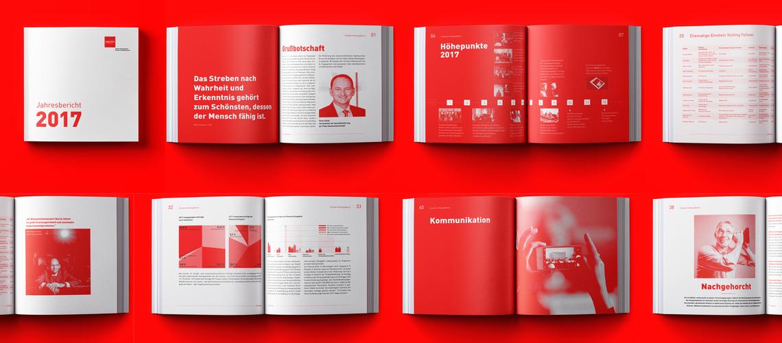 Ausschnitte aus dem Jahresbericht 2017 der Einstein Stiftung Berlin